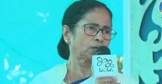'সিপিএমের হার্মাদরাই এখন বিজেপির ওস্তাদ': মমতা